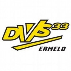 logo dvs33